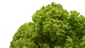 Was essen Veganer? Nur Salat?